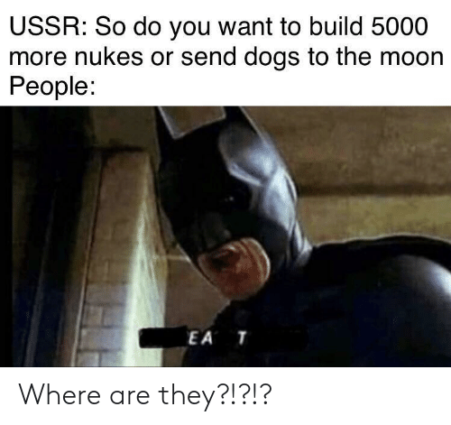 Dogs, Moon, and Ussr: USSR: So do you want to build 5000  more nukes or send dogs to the moon  People:  EA T Where are they?!?!?