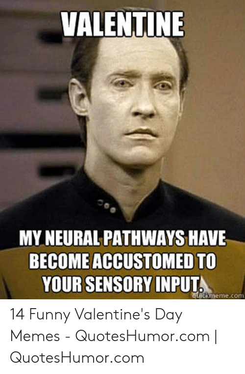 Quoteshumor: VALENTINE  MY NEURAL PATHWAYS HAVE  BECOME ACCUSTOMED TO  YOUR SENSORY INPUT  ckmeme.con 14 Funny Valentine's Day Memes - QuotesHumor.com | QuotesHumor.com
