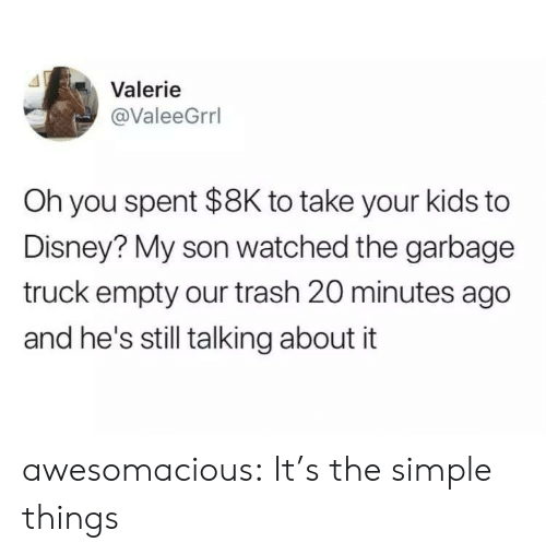 Disney, Trash, and Tumblr: Valerie  @ValeeGrrl  Oh you spent $8K to take your kids to  Disney? My son watched the garbage  truck empty our trash 20 minutes ago  and he's still talking about it awesomacious:  It's the simple things