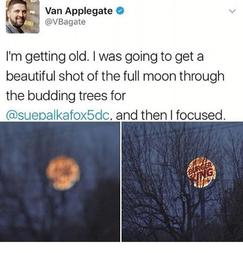Vanning: Van Applegate  @VBagate  I'm getting old. I was going to get a  beautiful shot of the full moon through  the budding trees for  @suepalkafox5dc, and then I focused