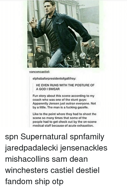 Gazelle: vanconcastiel:  clphabaforpresidentofgallifrey:  HE EVEN RUNS WITH THE POSTURE OF  A GOD I SWEAR  Fun story about this scene according to my  coach who was one of the stunt guys:  Apparently Jensen just outran everyone. Not  by a little. The man is a fucking gazelle.  Like to the point where they had to shoot the  scene so many times that some of the  people had to get check out by the on-scene  medical staff because of acute exhaustion. spn Supernatural spnfamily jaredpadalecki jensenackles mishacollins sam dean winchesters castiel destiel fandom ship otp