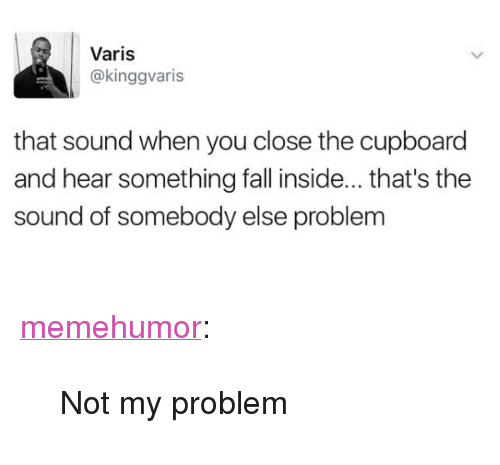 "Fall, Tumblr, and Blog: Varis  @kinggvaris  that sound when you close the cupboard  and hear something fall inside...that's the  sound of somebody else problem <p><a href=""http://memehumor.net/post/171086523803/not-my-problem"" class=""tumblr_blog"">memehumor</a>:</p>  <blockquote><p>Not my problem</p></blockquote>"