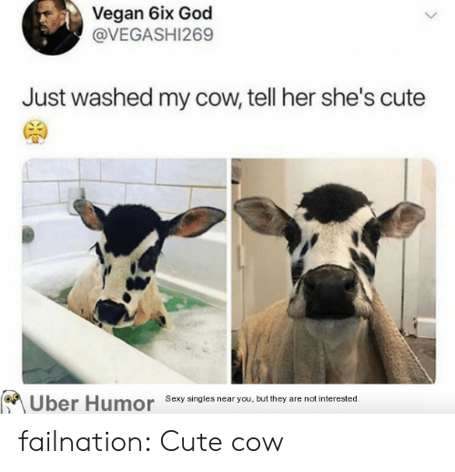 Singles: Vegan 6ix God  @VEGASHI269  Just washed my cow, tell her she's cute  Uber Humor  Sexy singles near you, but they are not interested. failnation:  Cute cow