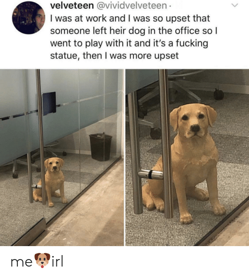 Fucking, The Office, and Work: velveteen @vividvelveteen  I was at work and I was so upset that  someone left heir dog in the office so l  went to play with it and it's a fucking  statue, then I was more upset me🐶irl