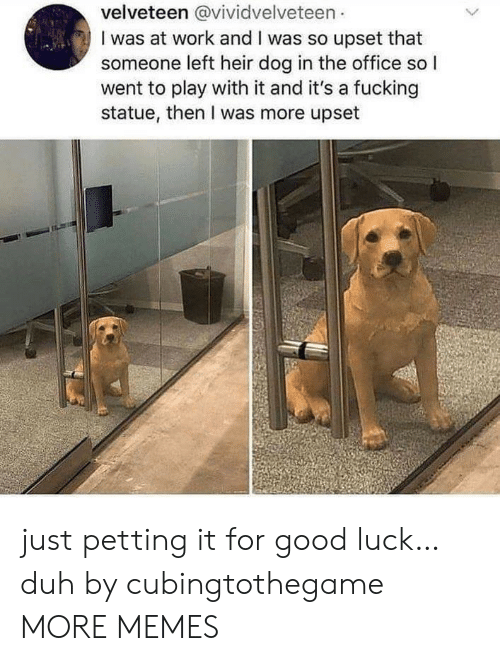 petting: velveteen @vividvelveteen  I was at work and I was so upset that  someone left heir dog in the office so I  went to play with it and it's a fucking  statue, then I was more upset just petting it for good luck… duh by cubingtothegame MORE MEMES