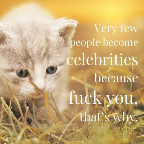 Fuck You Thats Why: Very few  people become  celebrities  because  fuck you,  that's why