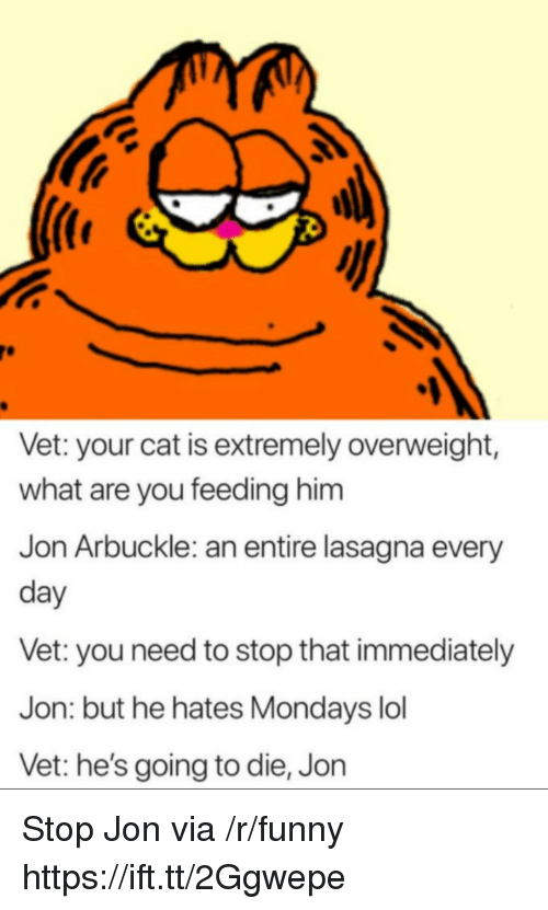 Stop That: Vet: your cat is extremely overweight,  what are you feeding him  Jon Arbuckle: an entire lasagna every  day  Vet: you need to stop that immediately  Jon: but he hates Mondays lol  Vet: he's going to die, Jon Stop Jon via /r/funny https://ift.tt/2Ggwepe