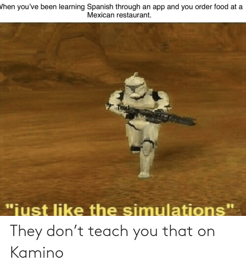 """kamino: Vhen you've been learning Spanish through an app and you order food at a  Mexican restaurant.  Text  """"iust like the simulations"""" They don't teach you that on Kamino"""