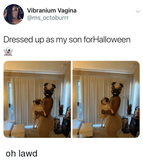 Memes, Vagina, and 🤖: Vibranium Vagina  @ms_octoburrr  Dressed up as my son forHalloween oh lawd