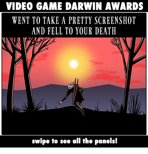 Memes, Death, and Game: VIDEO GAME DARWIN AWARDS  WENT TO TAKE A PRETTY SCREENSHOT  AND FELL TO YOUR DEATH  swipe to see all the panels!