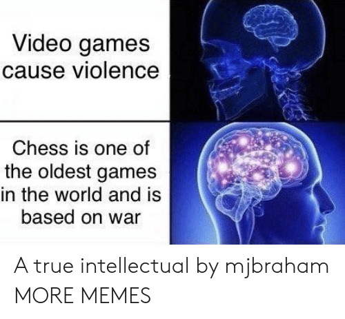 intellectual: Video games  cause violence  Chess is one of  the oldest games  in the world and is  based on war A true intellectual by mjbraham MORE MEMES