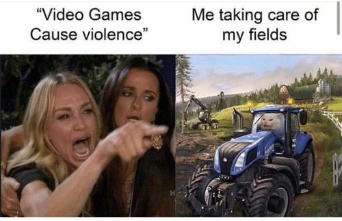 "Video Games, Games, and Video: ""Video Games  Me taking care of  my fields  Cause violence"""