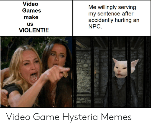 npc: Video  Me willingly serving  my sentence after  accidently hurting an  NPC  Games  make  us  VIOLENT!!! Video Game Hysteria Memes