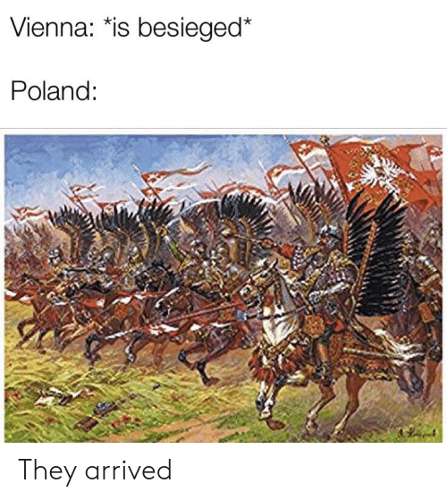 History, Poland, and Vienna: Vienna: *is besieged*  Poland: They arrived