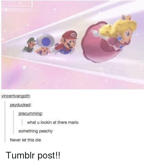 Memes, Tumblr, and Mario: vincentvangoth:  psyducked:  precumming:  what u lookin at there mario  something peachy  Never let this die Tumblr post!!