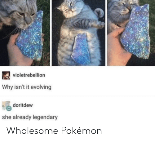 Pokemon, Wholesome, and Why: violetrebellion  Why isn't it evolving  doritdew  she already legendary Wholesome Pokémon