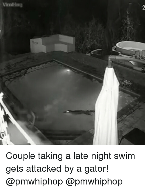 Memes, 🤖, and Couple: Viralldog Couple taking a late night swim gets attacked by a gator! @pmwhiphop @pmwhiphop