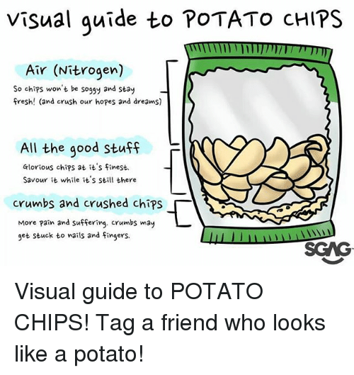 Pained: Visual quide to POTATO cHIPS  Air (Nitrogen)  So chips won't be soggy and stay  fresh! (and crush our hopes and dreams)  All the good Stuff  F  Glorious chips at it's finest.  Savour it while it's still there  crumbs and crushed chips「  More pain and suffering. crumbs may  get stuck to wails and Fingers.  SGAG Visual guide to POTATO CHIPS! Tag a friend who looks like a potato!