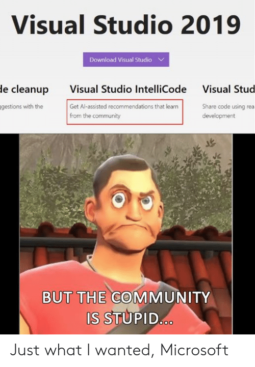 recommendations: Visual Studio 2019  Download Visual Studio  Visual Studio IntelliCode  Get Al-assisted recommendations that learn  from the community  le cleanup  Visual Stud  gestions with the  Share code using rea  development  BUT THE COMMUNITY  S STUPID Just what I wanted, Microsoft