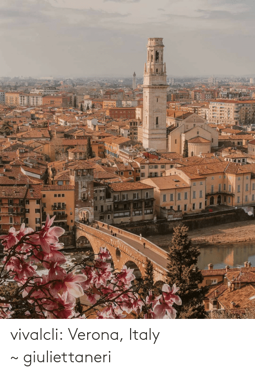 Instagram, Tumblr, and Blog: vivalcli:  Verona, Italy ~ giuliettaneri