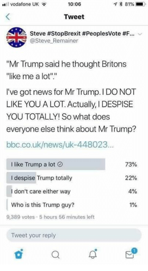 """Despise: vodafone UK  10:06  * 81%  Tweet  Steve #StopBrexit #PeoplesVote #F-.  @Steve Remainer  """"Mr Trump said he thought Britons  ike me a lot"""".""""  I've got news for Mr Trump. I DO NOT  LIKE YOU A LOT. Actually, I DESPISE  YOU TOTALLY! So what does  everyone else think about Mr Trump?  bbc.co.uk/news/uk-448023  I like Trump a lot  I despise Trump totally  I don't care either way  Who is this Trump guy?  73%  22%  4%  1%  9,389 votes 5 hours 56 minutes left  Tweet your reply"""