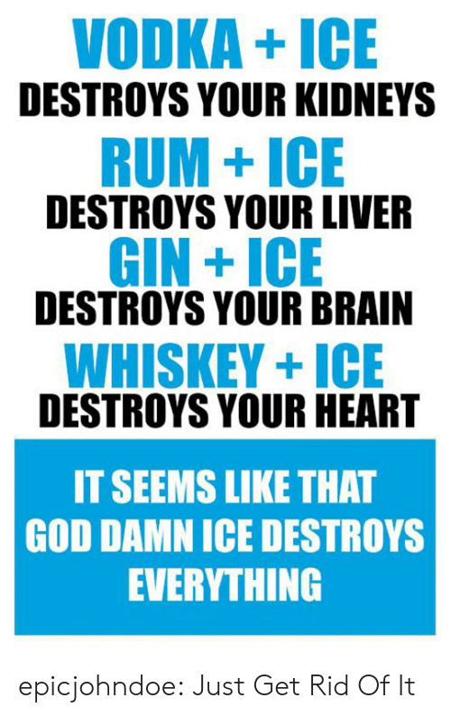 Rid: VODKA+ICE  DESTROYS YOUR KIDNEYS  RUM+ICE  DESTROYS YOUR LIVER  GIN +ICE  DESTROYS YOUR BRAIN  WHISKEY+ICE  DESTROYS YOUR HEART  IT SEEMS LIKE THAT  GOD DAMN ICE DESTROYS  EVERYTHING epicjohndoe:  Just Get Rid Of It