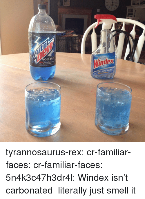voltage: VOLTAGE  Citrus Flavor and  Winider  CRYSTAL RAIN tyrannosaurus-rex: cr-familiar-faces:  cr-familiar-faces:  5n4k3c47h3dr4l:  Windex isn't carbonated   literally just smell it