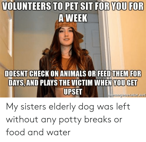 Animals, Food, and Water: VOLUNTEERS TO PET SIT FOR YOU FOR  A WEEK  DOESNT CHECK ON ANIMALS OR FEEDTHEMFOR  DAYS, AND PLAYS THE VICTIM WHEN YOU GET  UPSET  memegenerator.ue My sisters elderly dog was left without any potty breaks or food and water