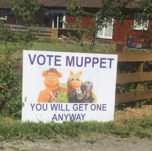Memes, 🤖, and Muppet: VOTE MUPPET  YOU WILL GET ONE  ANYWAY
