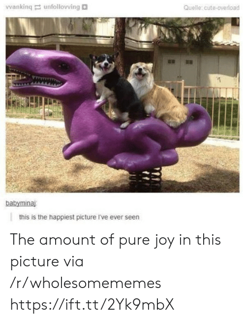 happiest: Vwanking unfollovving  Quelle:cute-overload  babyminaj  this is the happiest picture I've ever seen The amount of pure joy in this picture via /r/wholesomememes https://ift.tt/2Yk9mbX