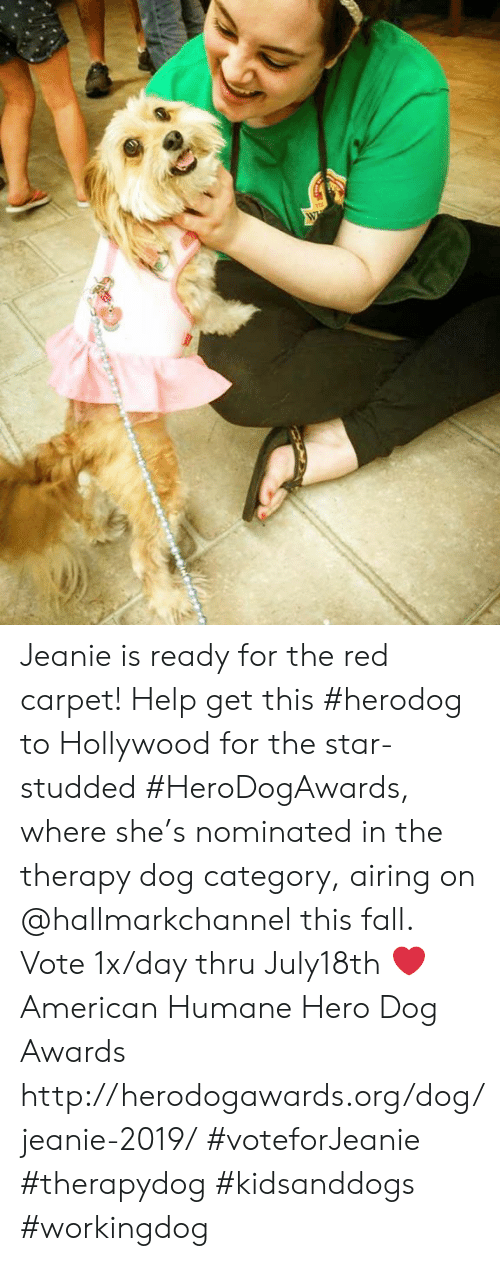 Hallmarkchannel: W Jeanie is ready for the red carpet! Help get this #herodog to Hollywood for the star-studded #HeroDogAwards, where she's nominated in the therapy dog category, airing on @hallmarkchannel this fall.  Vote 1x/day thru July18th ❤️ American Humane Hero Dog Awards http://herodogawards.org/dog/jeanie-2019/  #voteforJeanie #therapydog #kidsanddogs #workingdog