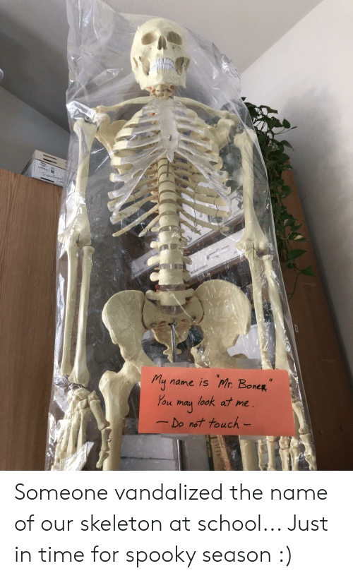 Boner, School, and Time: wadh  Iransfer mat  Lab  name is Mr. BoneR  My  You  look at me  may  Do not touch- Someone vandalized the name of our skeleton at school... Just in time for spooky season :)