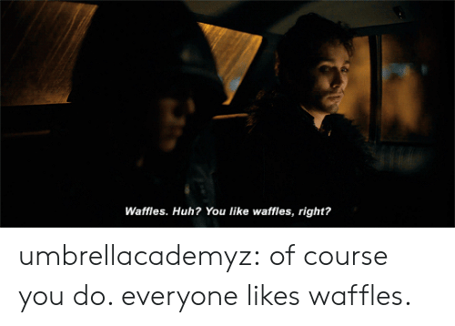 waffles: Waffles. Huh? You like waffles, right? umbrellacademyz: of course you do. everyone likes waffles.