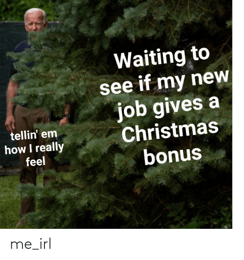 new job: Waiting to  see if my new  job gives a  Christmas  bonus  tellin' em  how I really  feel me_irl