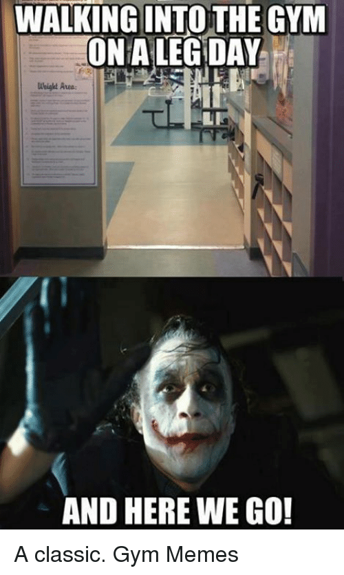And Here We Go: WALKING INTO THE GYM  ONA LEG DAY  weight Area:  AND HERE WE GO! A classic.  Gym Memes