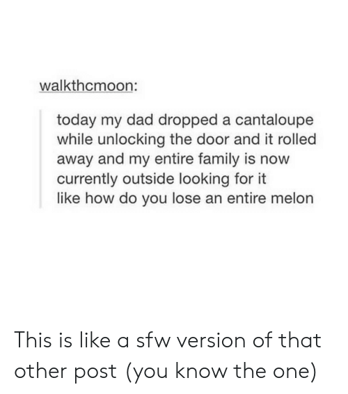 Dad, Family, and Today: walkthcmoon:  today my dad dropped a cantaloupe  while unlocking the door and it rolled  away and my entire family is now  currently outside looking for  like how do you lose an entire melon This is like a sfw version of that other post (you know the one)