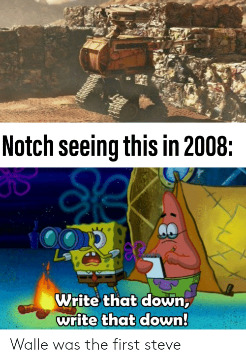 walle: Walle was the first steve
