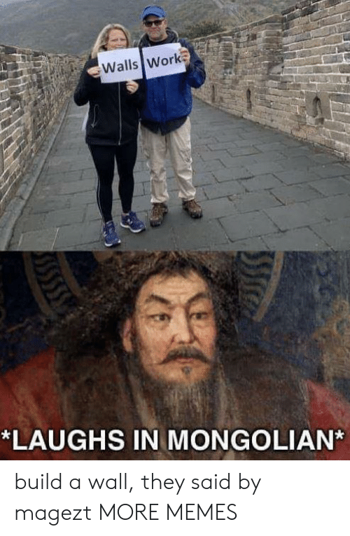 build a: Walls Work  *LAUGHS IN MONGOLIAN build a wall, they said by magezt MORE MEMES