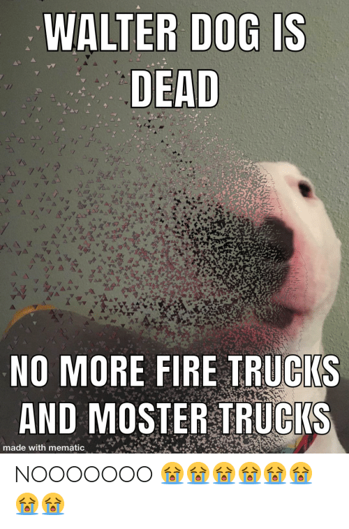 Moster: WALTER DOG IS  DEAD  NO MORE FIRE TRUCKS  AND MOSTER TRUCKS  made with mematic NOOOOOOO 😭😭😭😭😭😭😭😭