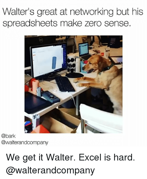 Memes, Zero, and Excel: Walter's great at networking but his  spreadsheets make zero sense.  @bark  @walterandcompany We get it Walter. Excel is hard. @walterandcompany