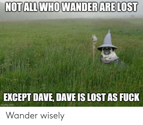 Wisely: Wander wisely