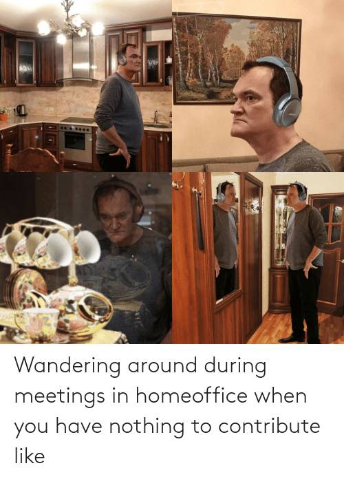 When You Have: Wandering around during meetings in homeoffice when you have nothing to contribute like