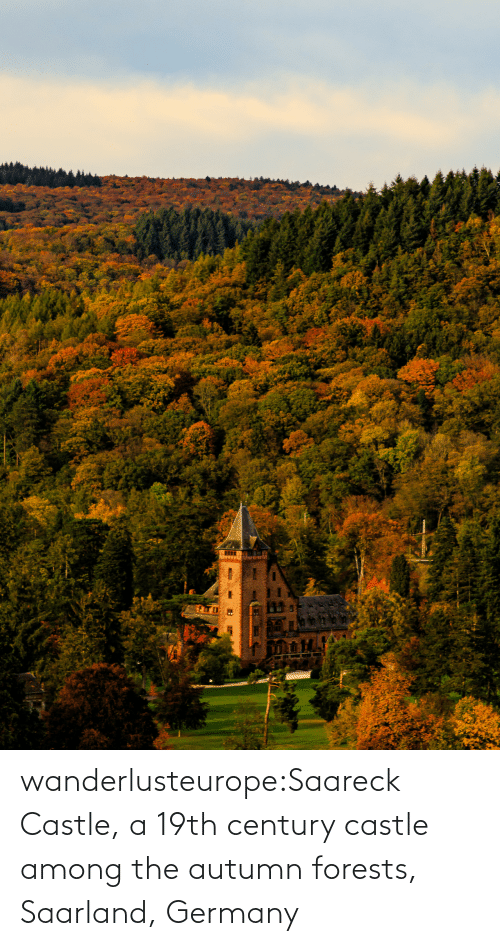 Search: wanderlusteurope:Saareck Castle, a 19th century castle among the autumn forests, Saarland, Germany