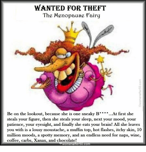 lousy: WANTED FOR THEFT  The Menopause Fairy  Be on the lookout, because she is one sneaky B ** *...At first she  steals your figure, then she steals your sleep, next your mood, your  patience, your eyesight, and finally she eats your brain! All she leaves  you with is a lousy moustache, a muffin top, hot flashes, itchy skin, 10  million moods, a spotty memory, and an endless need for naps, wine,  coffee, carbs, Xanax, and chocolate!