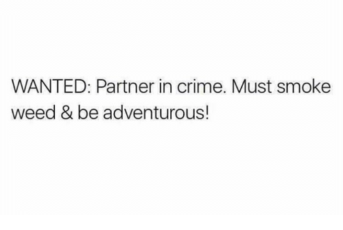 Smoke Weed: WANTED: Partner in crime. Must smoke  weed & be adventurous!