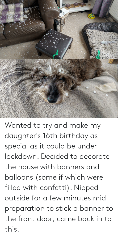 Daughters: Wanted to try and make my daughter's 16th birthday as special as it could be under lockdown. Decided to decorate the house with banners and balloons (some if which were filled with confetti). Nipped outside for a few minutes mid preparation to stick a banner to the front door, came back in to this.