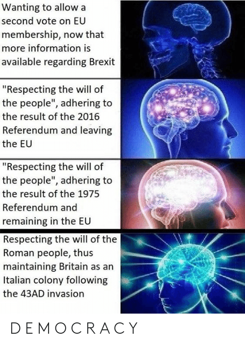 """The 1975: Wanting to allow a  second vote on EU  membership, now that  more information is  available regarding Brexit  """"Respecting the will of  the people"""", adhering to  the result of the 2016  Referendum and leaving  the EU  """"Respecting the will of  the people"""", adhering to  the result of the 1975  Referendum and  remaining in the EU  Respecting the will of the  Roman people, thus  maintaining Britain as an  Italian colony following  the 43AD invasion D E M O C R A C Y"""