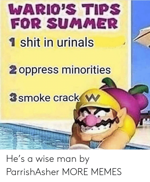 Minorities: WARIO'S TIPS  FOR SUMMER  1 shit in urinals  2 oppress minorities  smoke crack w He's a wise man by ParrishAsher MORE MEMES