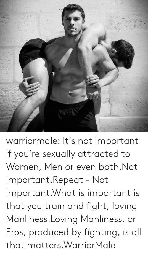 Loving: warriormale:  It's not important if you're sexually attracted to Women, Men or even both.Not Important.Repeat - Not Important.What is important is that you train and fight, loving Manliness.Loving Manliness, or Eros, produced by fighting, is all that matters.WarriorMale