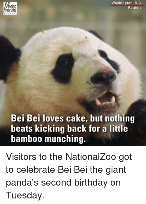 Caking: Washington, D.C.  Reuters  NEWS  Bei Bei loves cake, but nothing  beats kicking back for a little  bamb00 munching. Visitors to the NationalZoo got to celebrate Bei Bei the giant panda's second birthday on Tuesday.